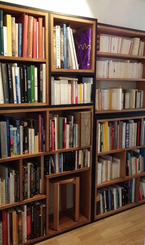 bibliotheque noir et chene3 - espaces au singulier